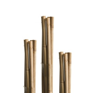 Pritka od bambusa Windhager WH 05609, 150cm