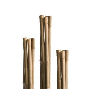 Pritka od bambusa Windhager WH 05612, 240 cm