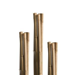 Pritka od bambusa Windhager WH 05610, 180 cm